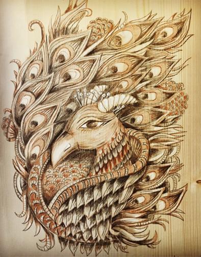 peacockf